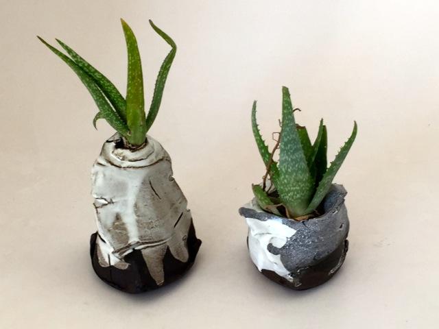 metamorphic vases